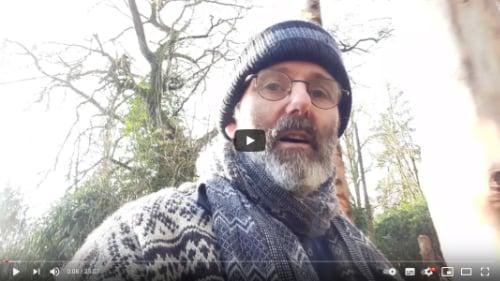 coaching en inspiratie bronwereld youtube eekhoorninspiratie